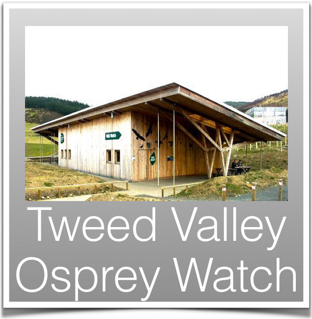 Tweed Valley Osprey Watch