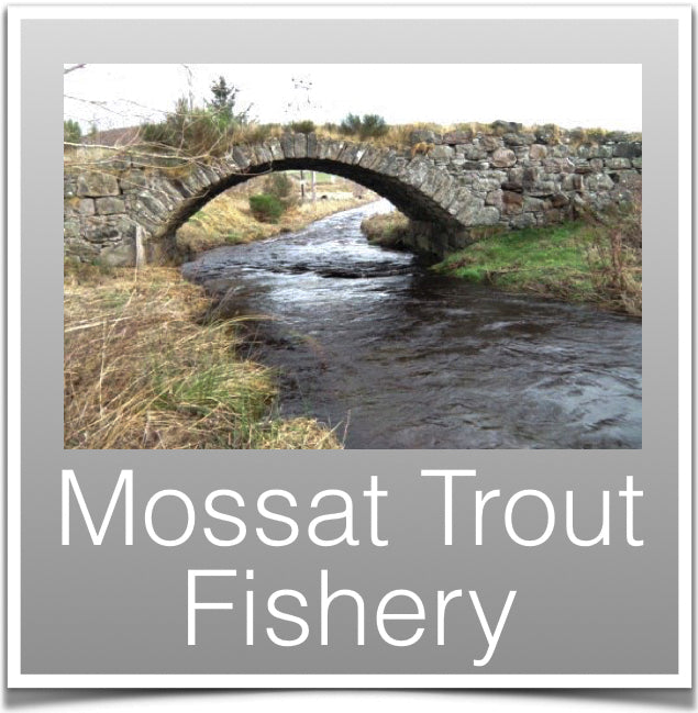 Mossat Trout Fishery