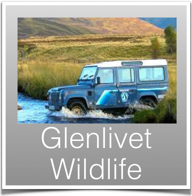 Glenlivet Wildlife