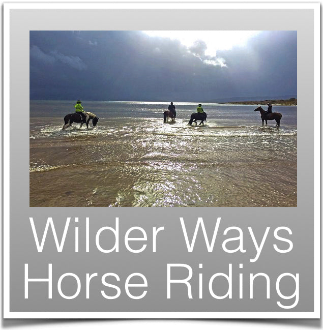 Wilder Ways Horse Riding