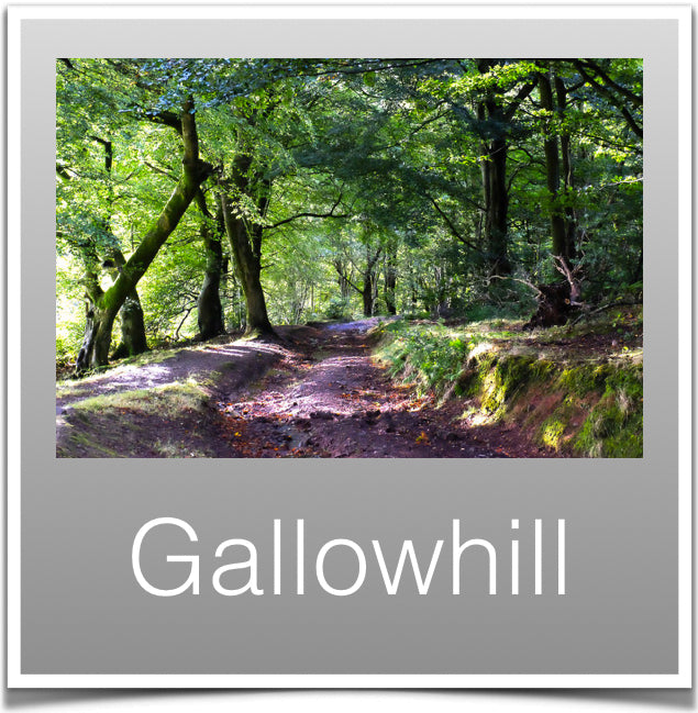 Gallowhill