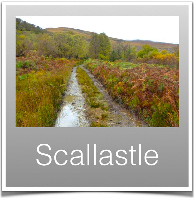 Scallastle