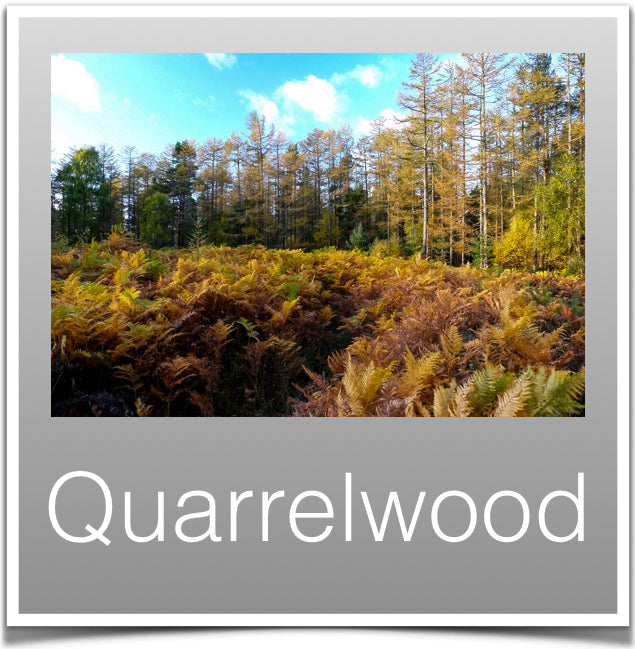Quarrelwood
