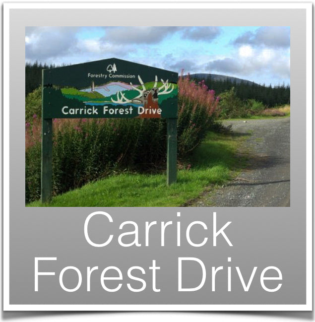 Carrick Forest Drive