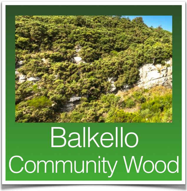 Balkello Community Wood