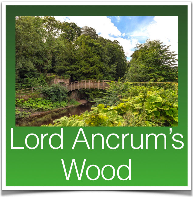Lord Ancrum's Wood