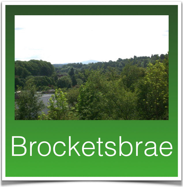 Brocketsbrae