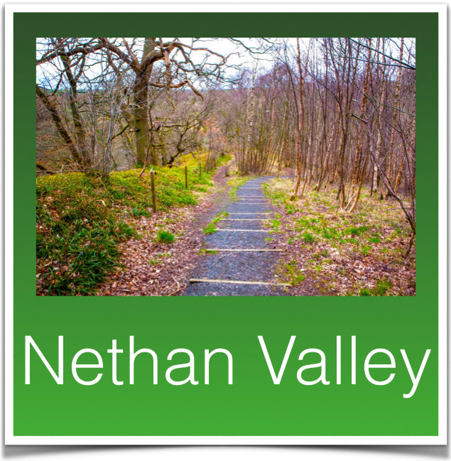 Nethan Valley