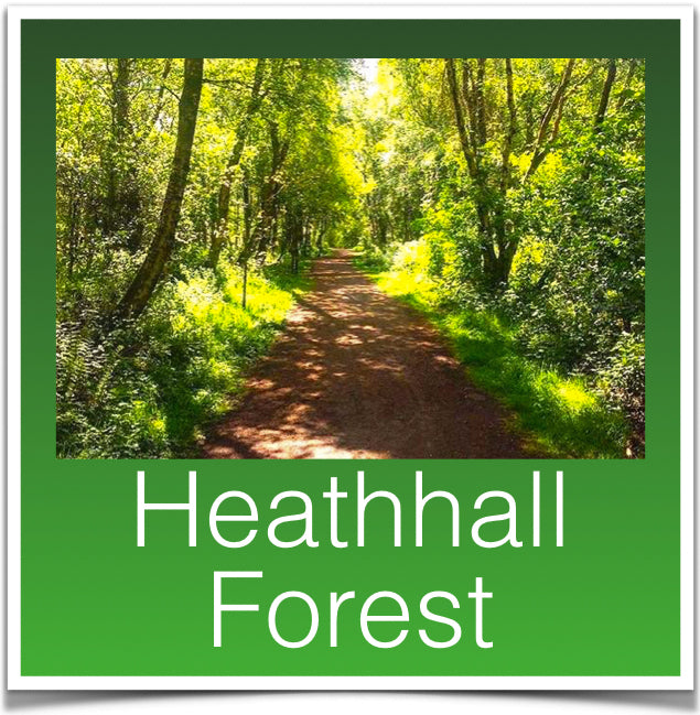 Heathhall Forest