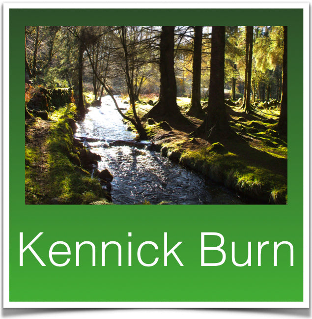 Kennick Burn