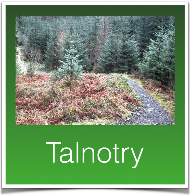 Talnotry