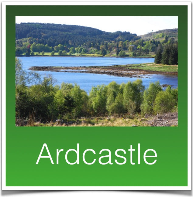 Ardcastle