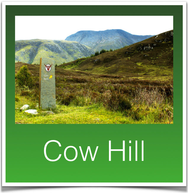 Cow Hill