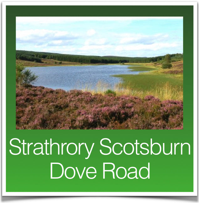 Strathrory Scotsburn Dove Road