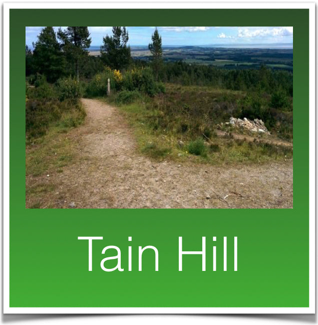 Tain Hill