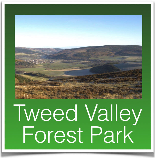Tweed Valley Forest Park