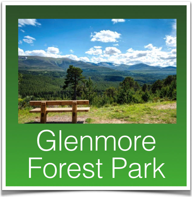 Glenmore Forest Park