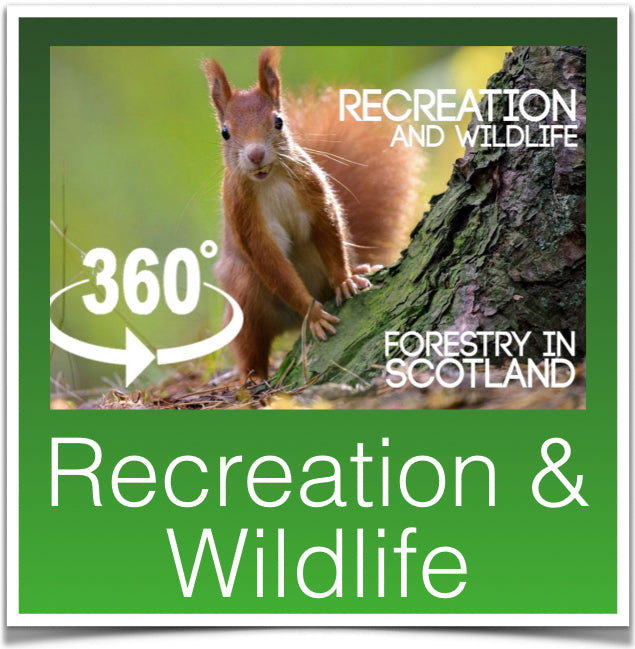 Recreation & Wildlife