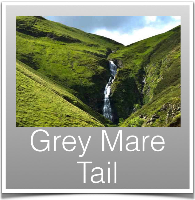Grey Mare Tail