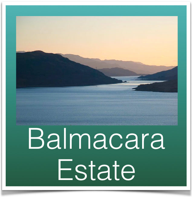 Balmacara Estate