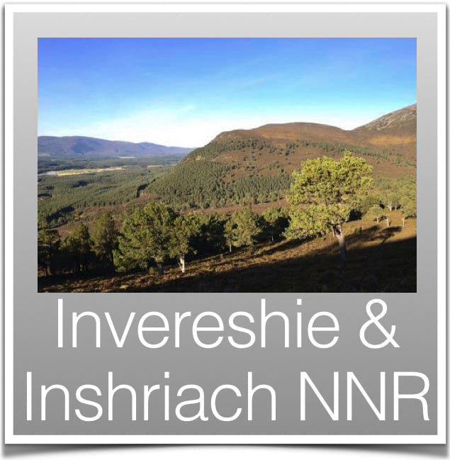 Invereshie