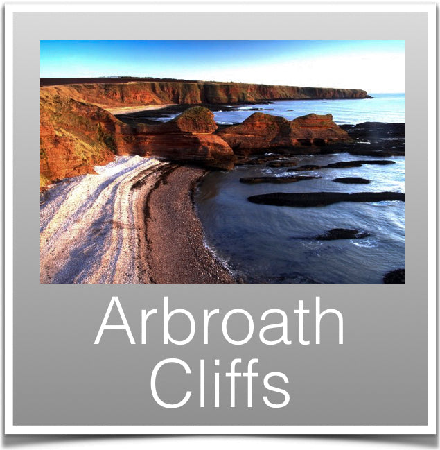 Arbroath Cliffs