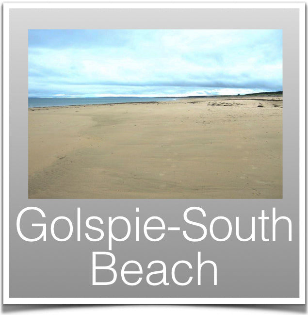 Golspie-South Beach