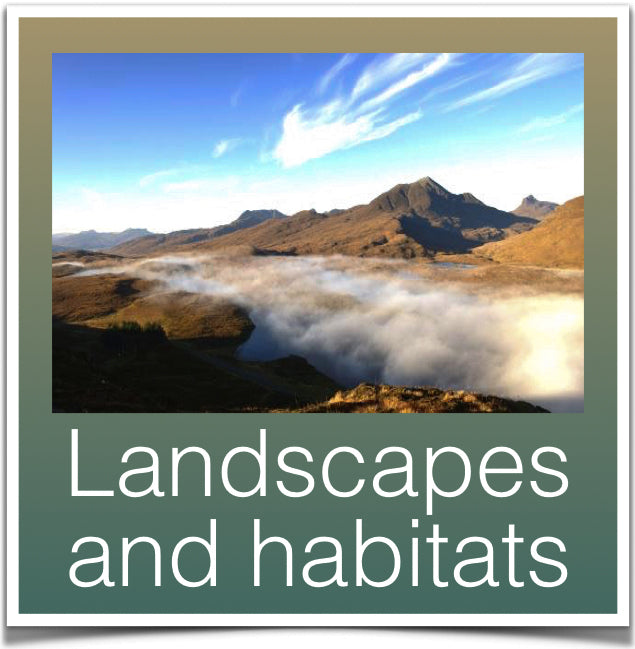 Landscapes and habitats