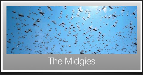 Midges in Scotland