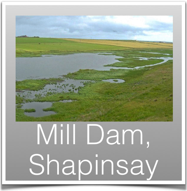 Mill Dam, Shapinsay