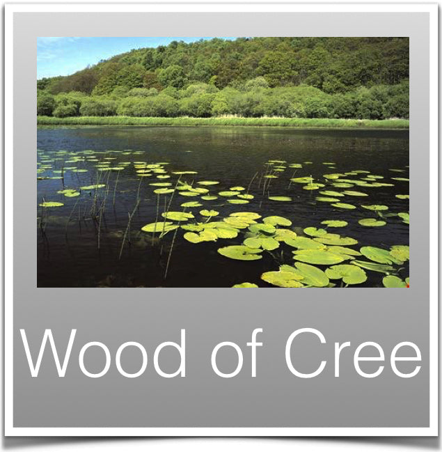 Wood of Cree