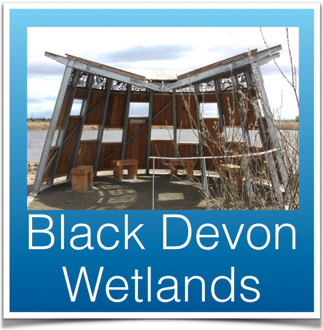 Black Devon Wetlands
