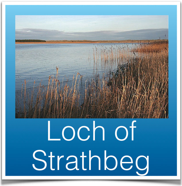 Loch of Strathbeg
