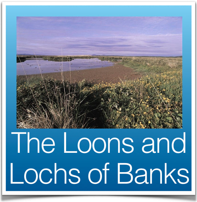 The Loons and Lochs of Banks