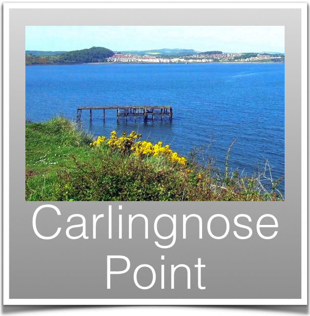 Carlingnose Point