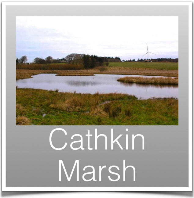 Cathkin Marsh