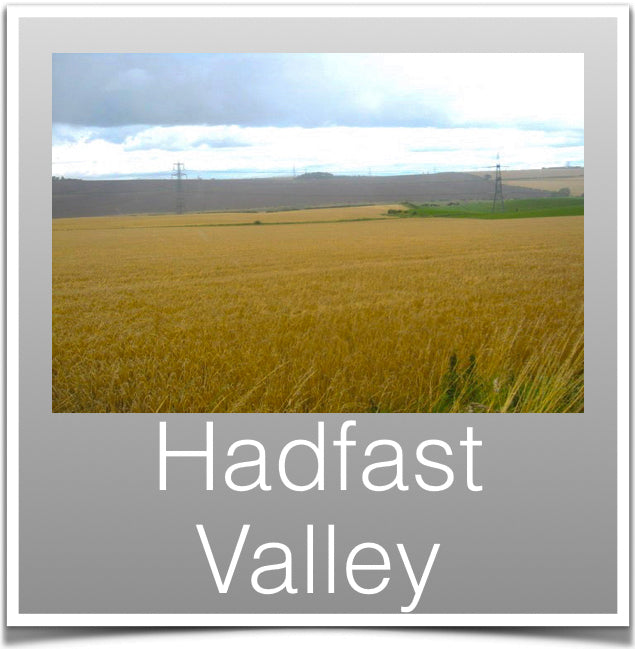 Hadfast Valley