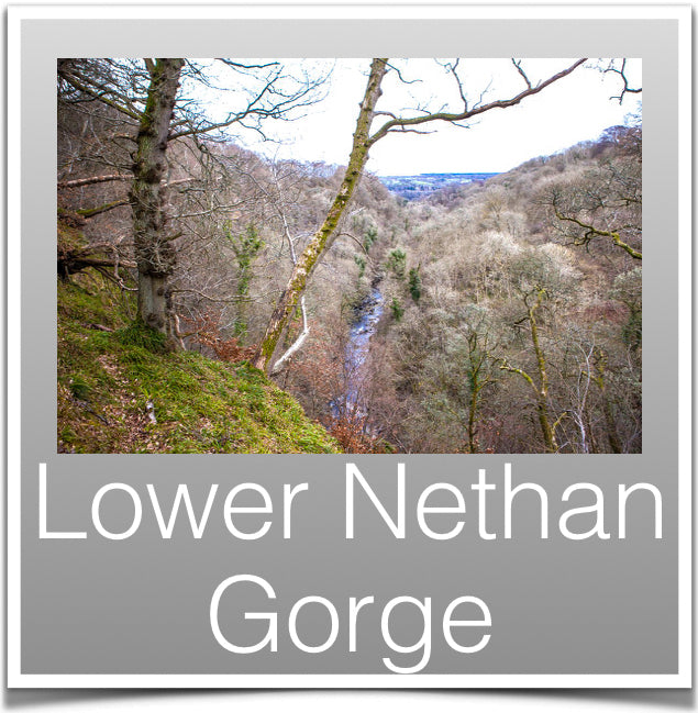 Lower Nethan Gorge