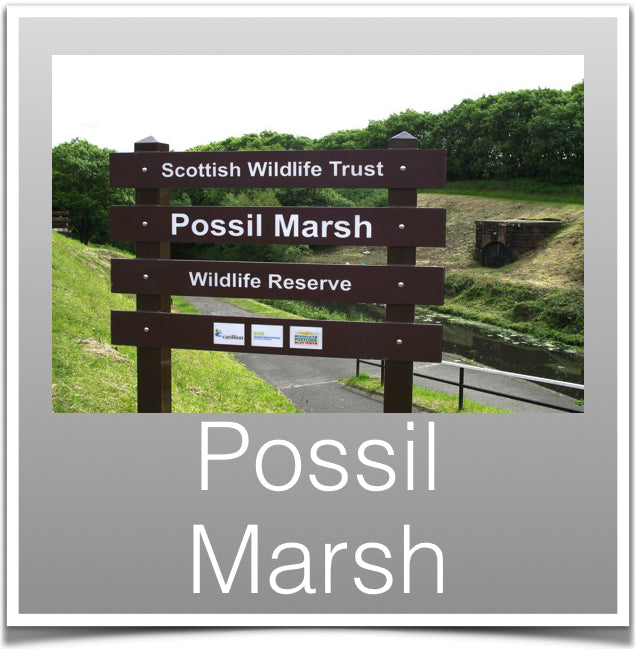 Possil Marsh
