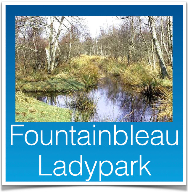 Fountainbleau Ladypark