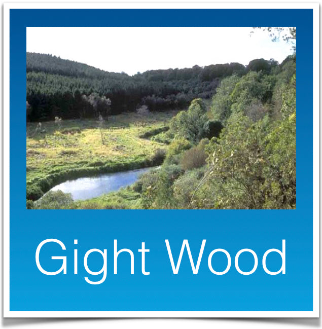 Gight Wood