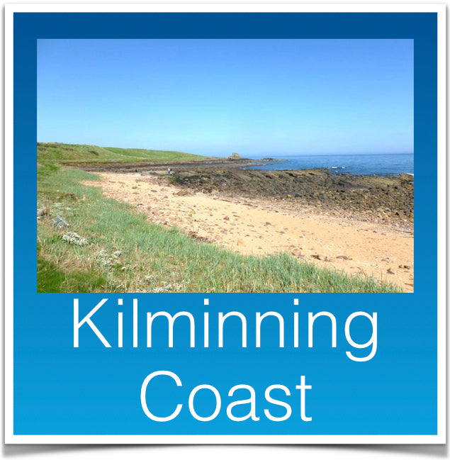 Kilminning Coast