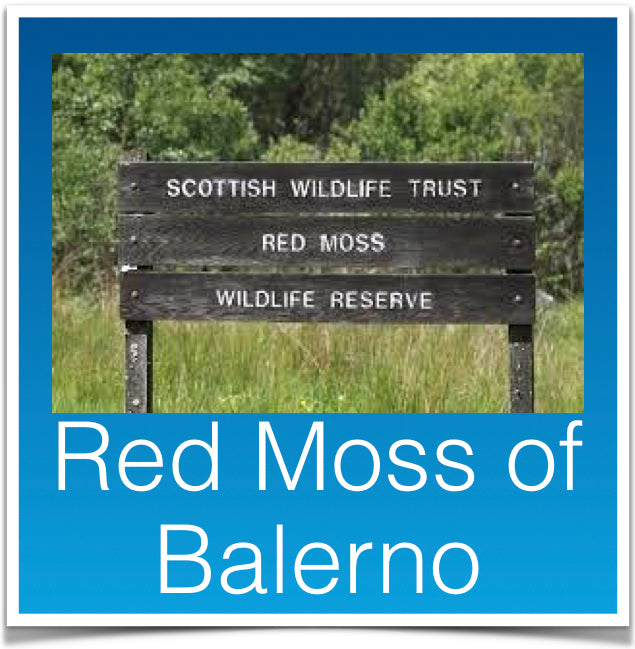 Red Moss of Balerno