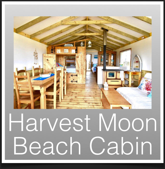 Harvest Moon Cabins