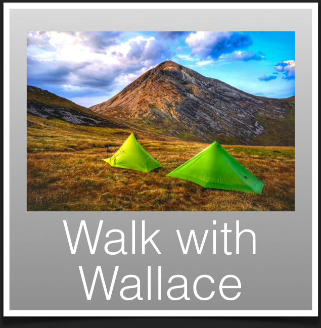 Walk with Wallace