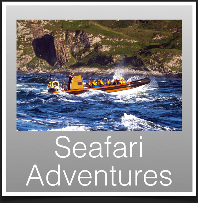 Seafari Adventures