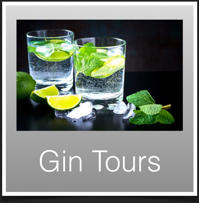 Gin Distilleries Scotland