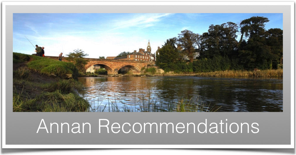 Annan Recommendations