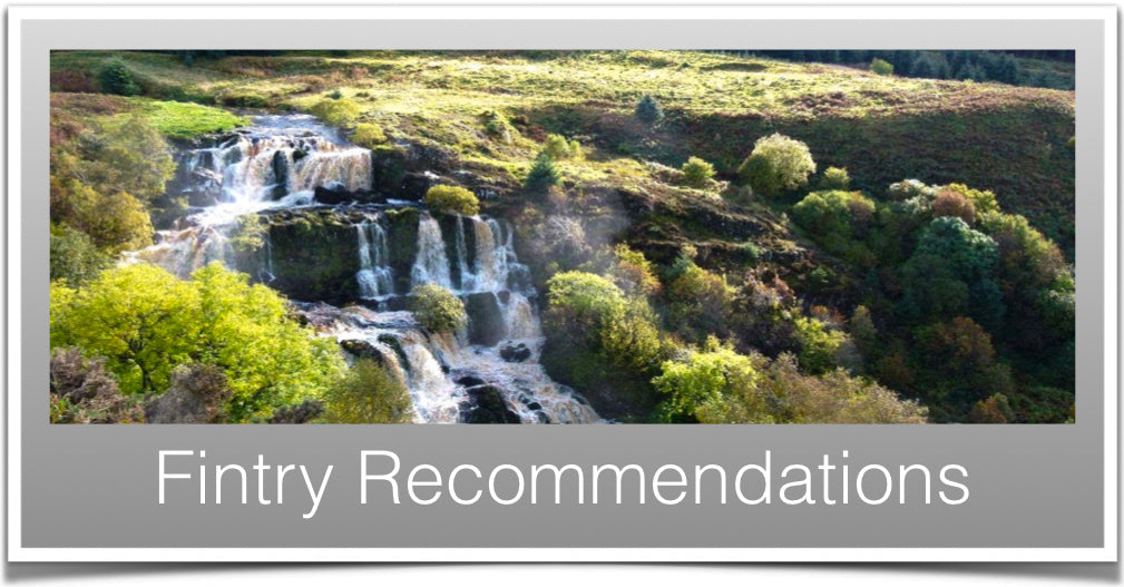 Fintry Recommendations