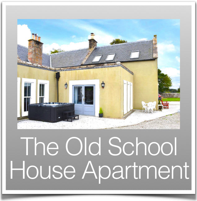 The Old School Apartment